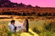 Професійна відео-фотозйомка весіль FULL HD,  3D