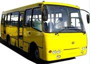 Водители (кат Д) автобуса