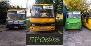 Транспортна реклама Рівне,  реклама на транспорті Західна Україна